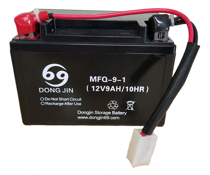 DG-6500 12 volt battery